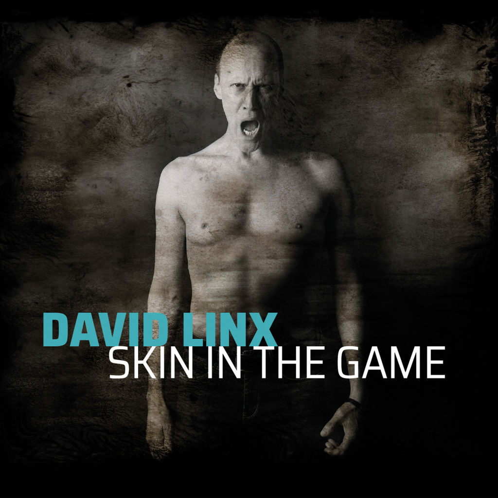 David Linx - Skin In The Game